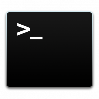 A black terminal with white text showing the command line prompt: >_