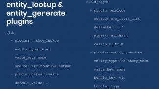 sample entity look up and entity generate plugins YML config